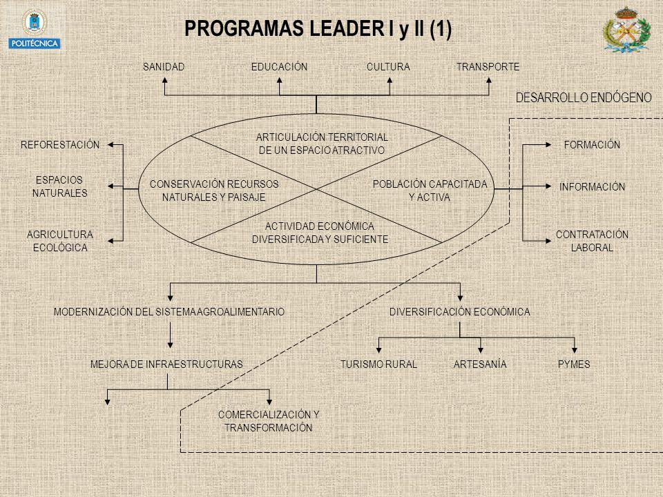 PROGRAMAS LEADER I y II (1)