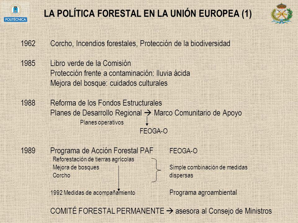 LA POLÍTICA FORESTAL EN LA UNIÓN EUROPEA (1)