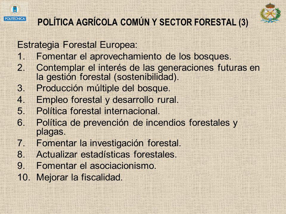 POLÍTICA AGRÍCOLA COMÚN Y SECTOR FORESTAL (3)