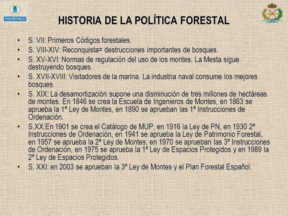 HISTORIA DE LA POLÍTICA FORESTAL