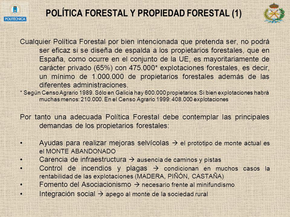 POLÍTICA FORESTAL Y PROPIEDAD FORESTAL (1)