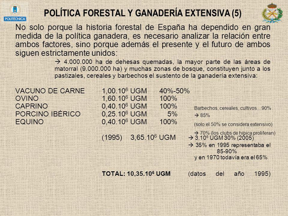 POLÍTICA FORESTAL Y GANADERÍA EXTENSIVA (5)
