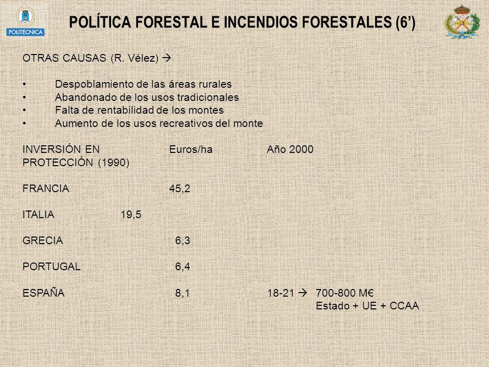 POLÍTICA FORESTAL E INCENDIOS FORESTALES (6')