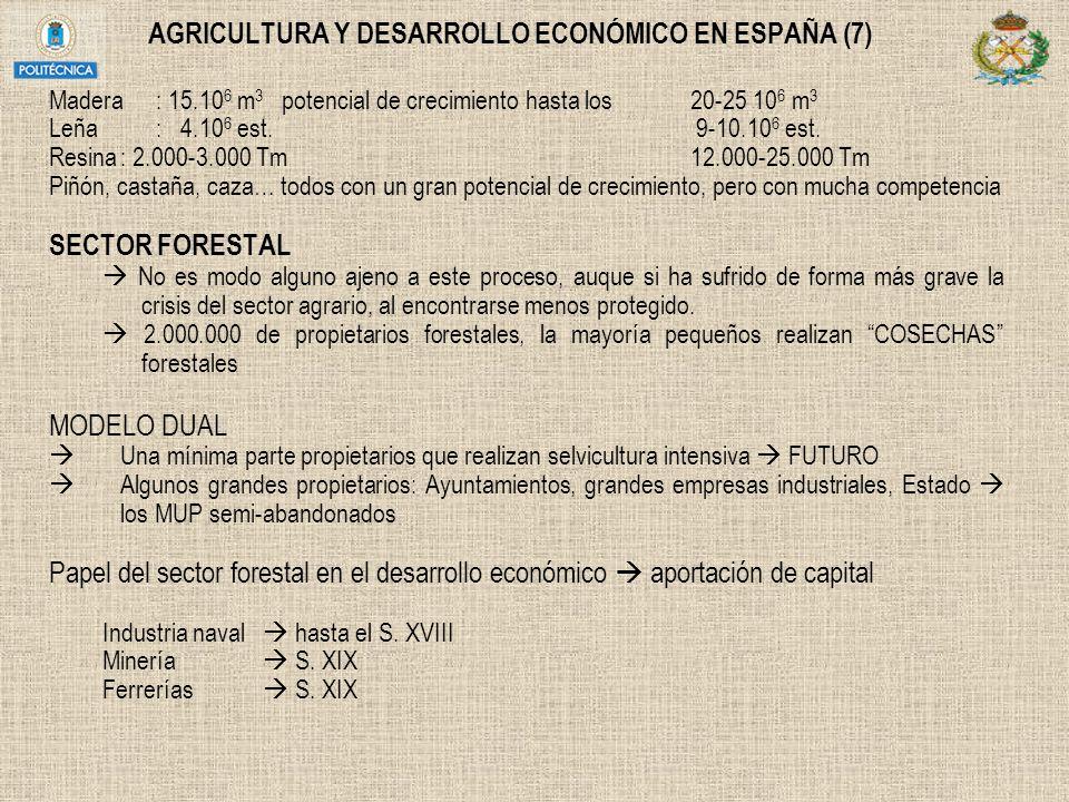 AGRICULTURA Y DESARROLLO ECONÓMICO EN ESPAÑA (7)