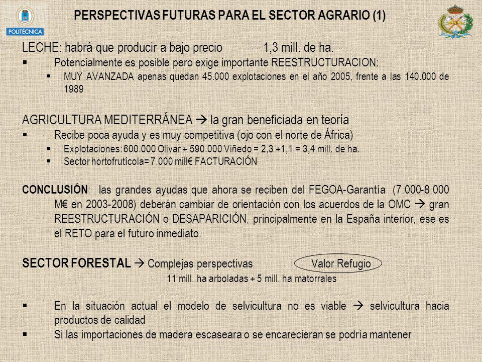 PERSPECTIVAS FUTURAS PARA EL SECTOR AGRARIO (1)