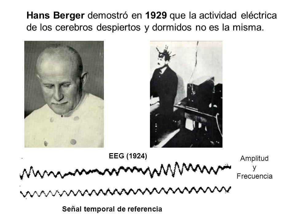 Hans Berger demostró en 1929 que la actividad eléctrica