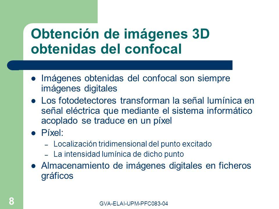 Obtención de imágenes 3D obtenidas del confocal