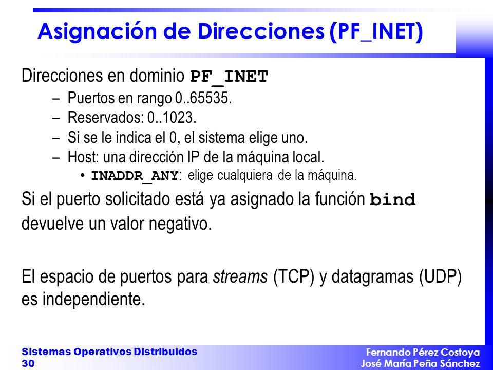 Asignación de Direcciones (PF_INET)