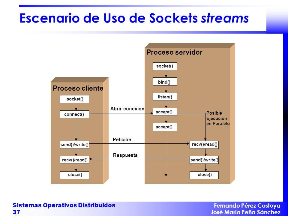 Escenario de Uso de Sockets streams