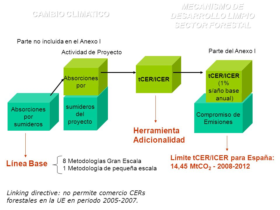 MECANISMO DE DESARROLLO LIMPIO SECTOR FORESTAL
