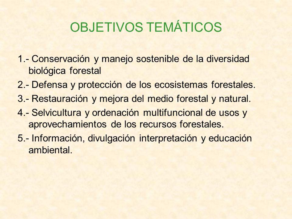 OBJETIVOS TEMÁTICOS 1.- Conservación y manejo sostenible de la diversidad biológica forestal.