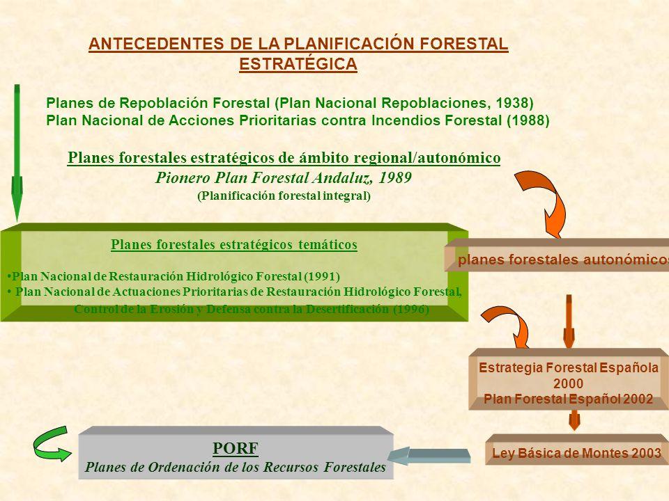 ANTECEDENTES DE LA PLANIFICACIÓN FORESTAL ESTRATÉGICA