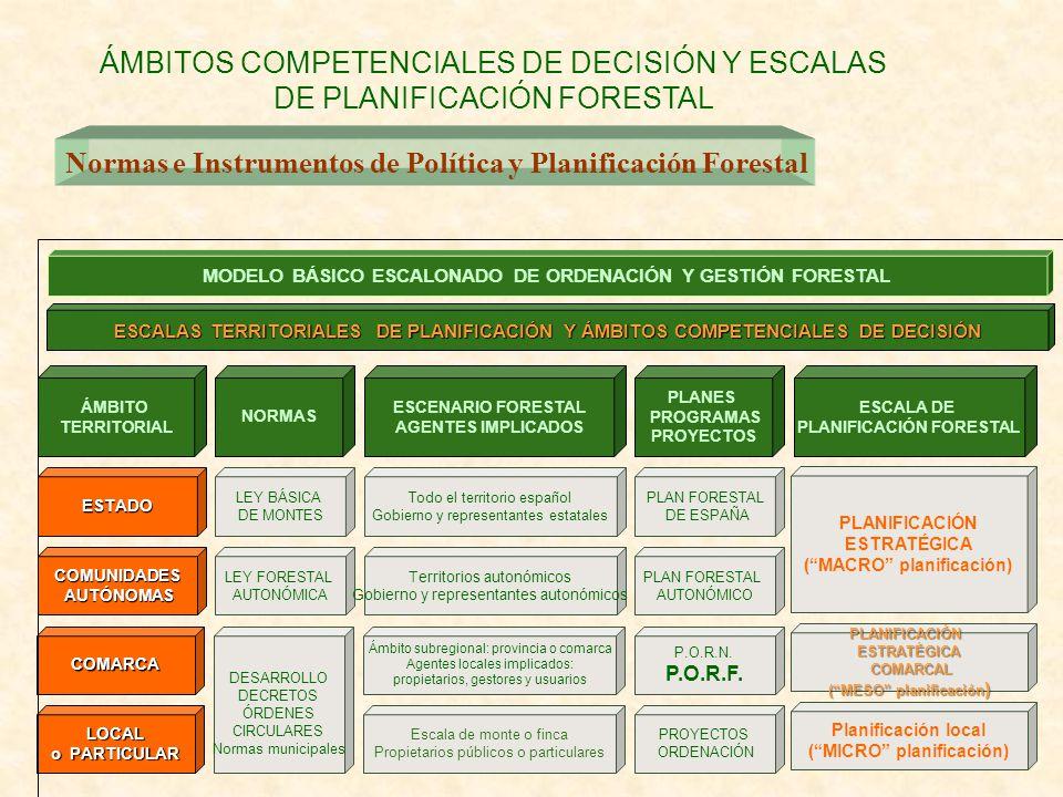 ÁMBITOS COMPETENCIALES DE DECISIÓN Y ESCALAS DE PLANIFICACIÓN FORESTAL