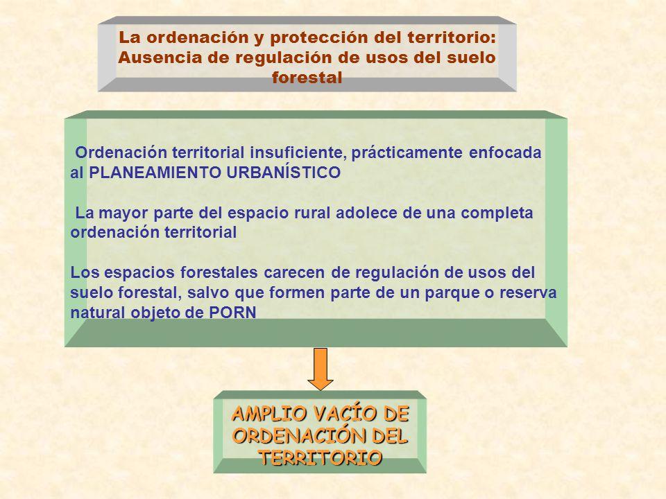 AMPLIO VACÍO DE ORDENACIÓN DEL TERRITORIO