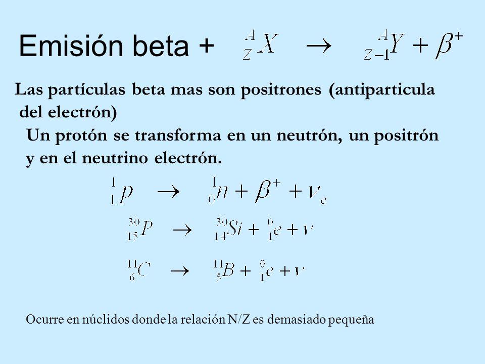 Emisión beta + Las partículas beta mas son positrones (antiparticula