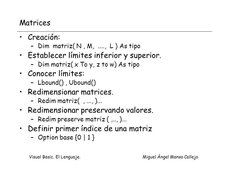 Visual Basic. El Lenguaje. Miguel Ángel Manso Callejo