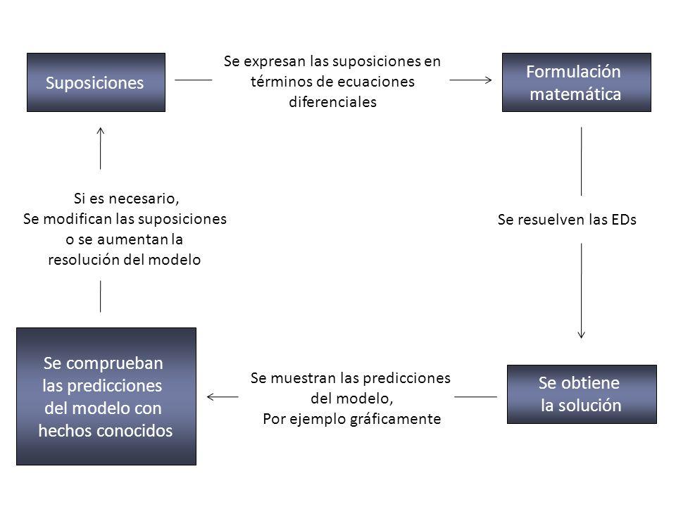 Formulación Suposiciones matemática Se comprueban las predicciones
