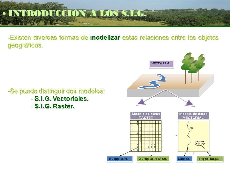 INTRODUCCIÓN A LOS S.I.G. Existen diversas formas de modelizar estas relaciones entre los objetos geográficos.