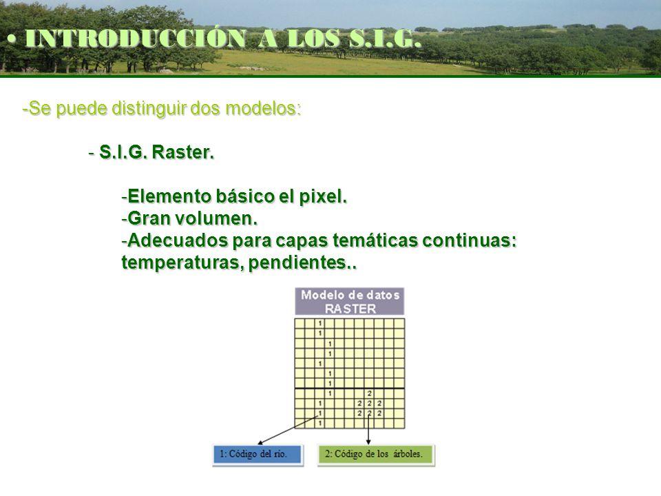 INTRODUCCIÓN A LOS S.I.G. -Se puede distinguir dos modelos: