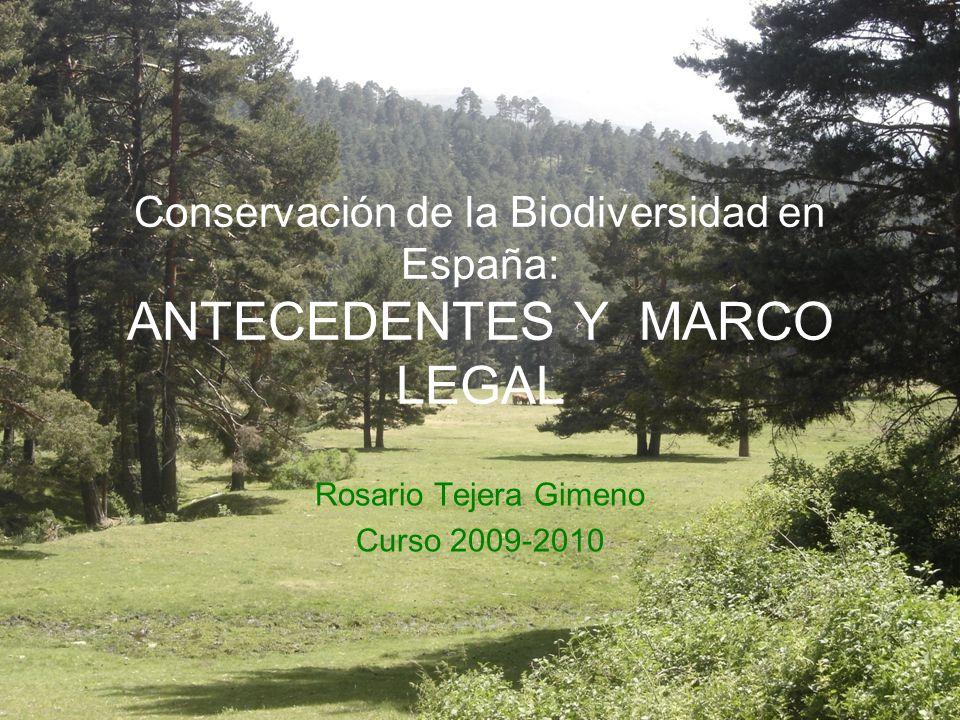 Conservación de la Biodiversidad en España: ANTECEDENTES Y MARCO LEGAL