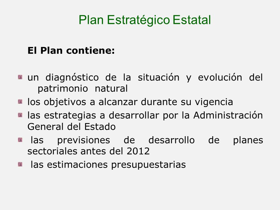 Plan Estratégico Estatal