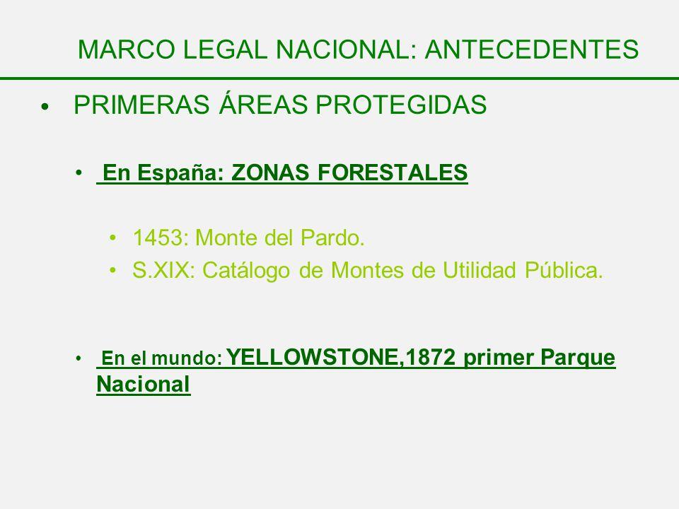 MARCO LEGAL NACIONAL: ANTECEDENTES