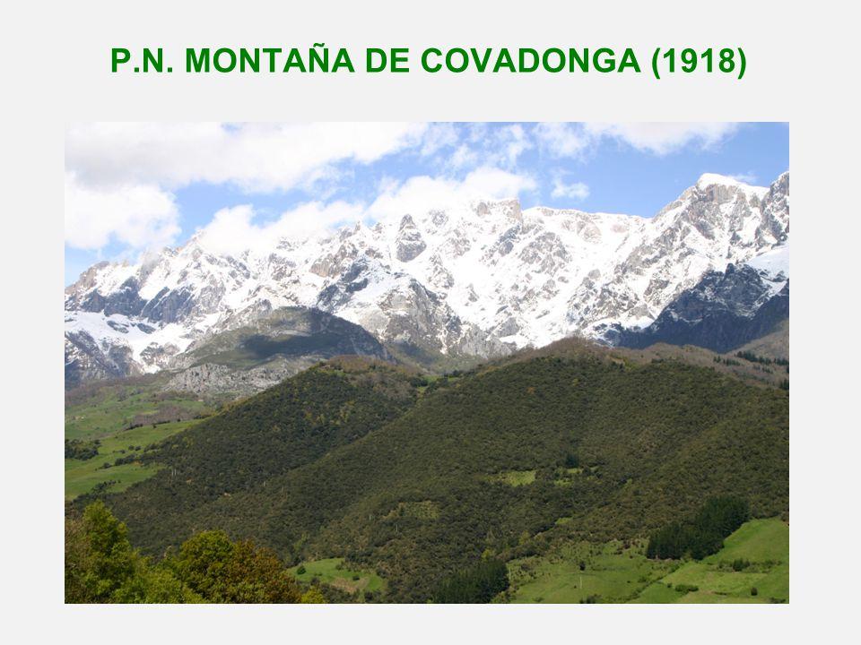 P.N. MONTAÑA DE COVADONGA (1918)