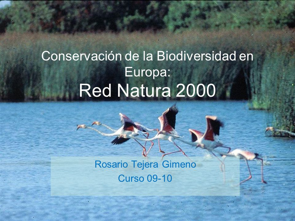 Conservación de la Biodiversidad en Europa: Red Natura 2000