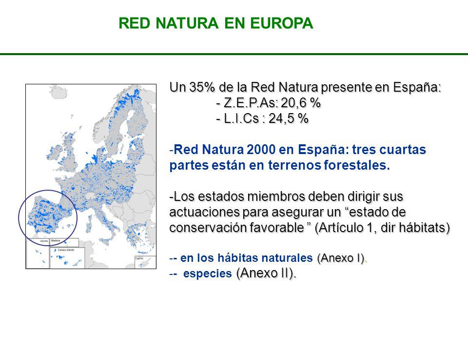 RED NATURA EN EUROPA Un 35% de la Red Natura presente en España: