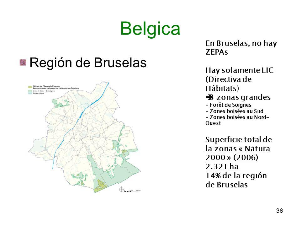 Belgica Región de Bruselas En Bruselas, no hay ZEPAs