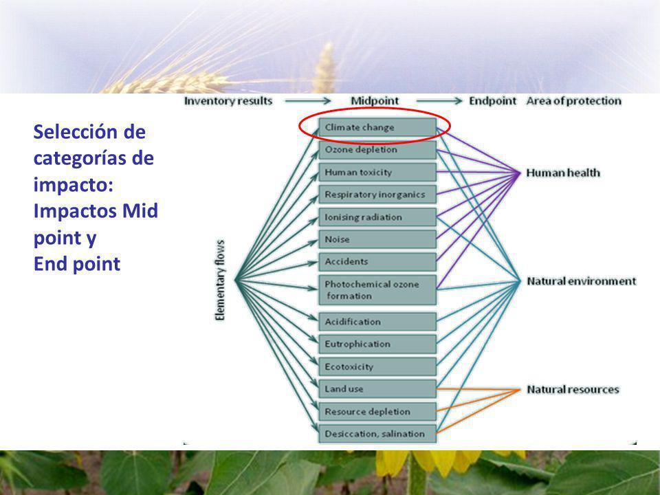 Fase 3: Evaluación del impacto del ciclo de vida