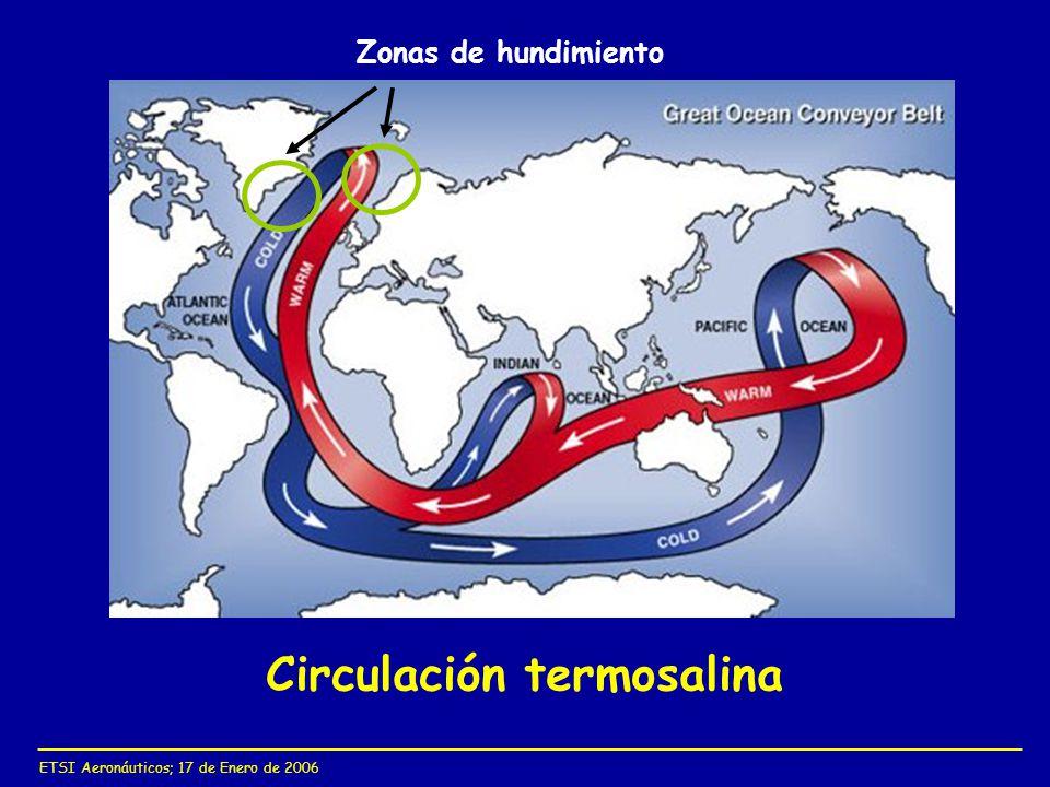 Circulación termosalina