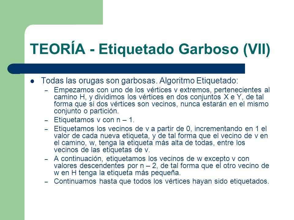 TEORÍA - Etiquetado Garboso (VII)