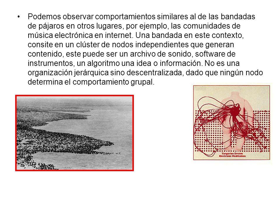 Podemos observar comportamientos similares al de las bandadas de pájaros en otros lugares, por ejemplo, las comunidades de música electrónica en internet.