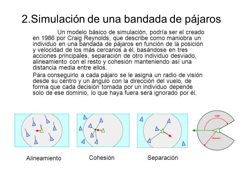 2.Simulación de una bandada de pájaros
