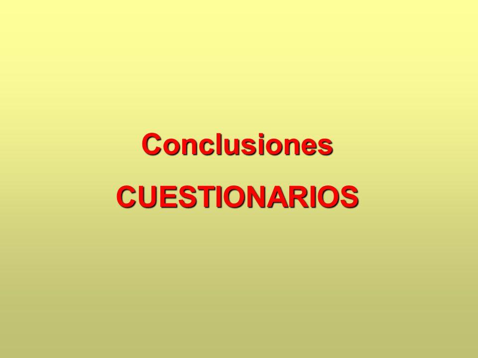 Conclusiones CUESTIONARIOS