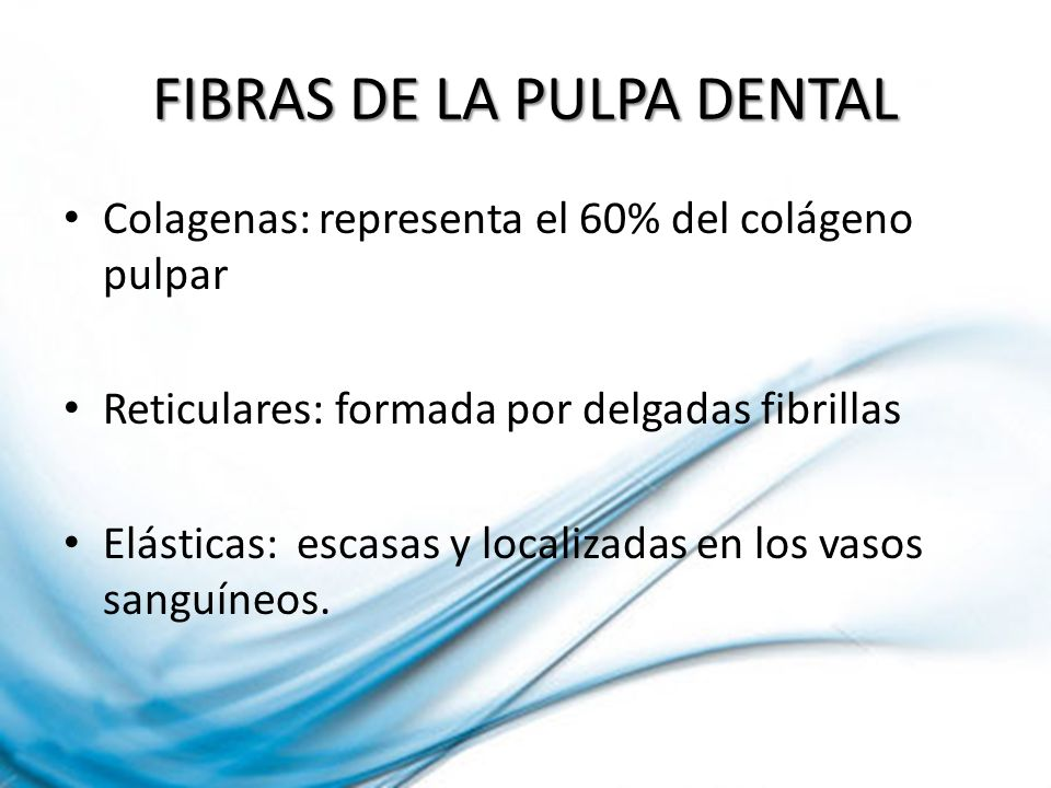 FIBRAS DE LA PULPA DENTAL