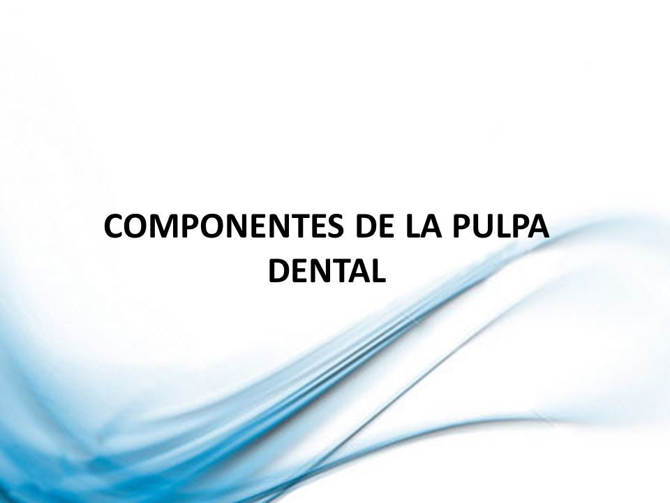 Componentes de la pulpa dental