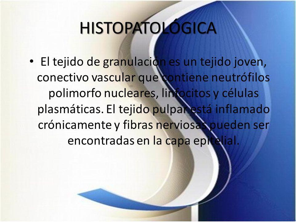 HISTOPATOLÓGICA