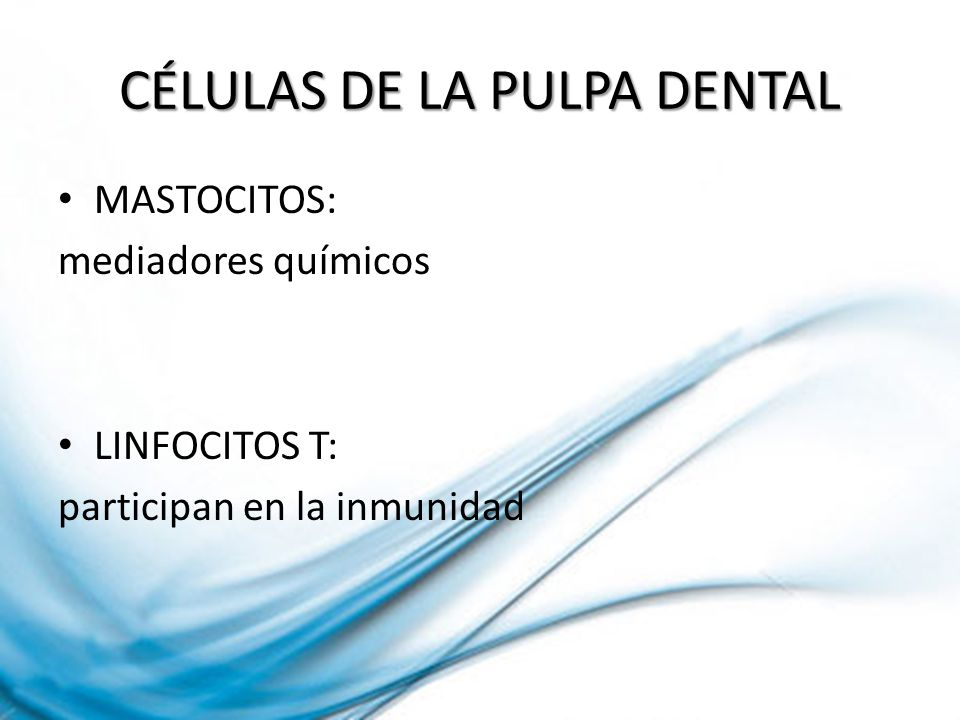 CÉLULAS DE LA PULPA DENTAL