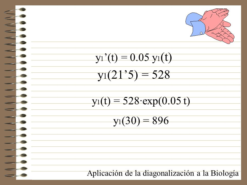 y1(21'5) = 528 y1'(t) = 0.05 y1(t) y1(t) = 528·exp(0.05 t)