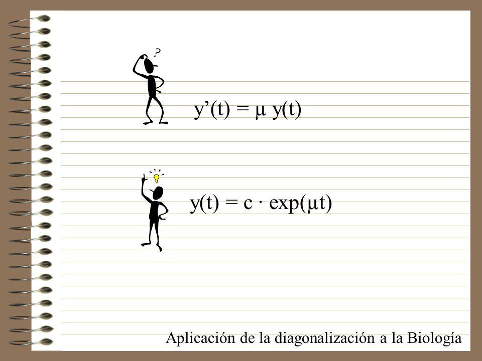 y'(t) = µ y(t) y(t) = c · exp(µt)
