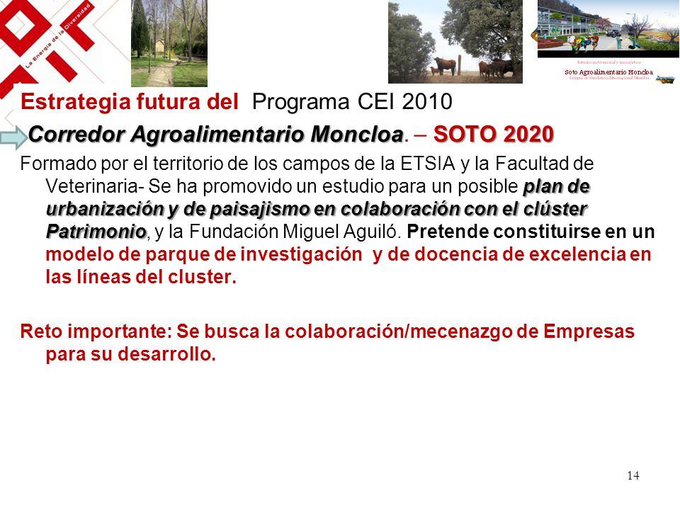 Estrategia futura del Programa CEI 2010