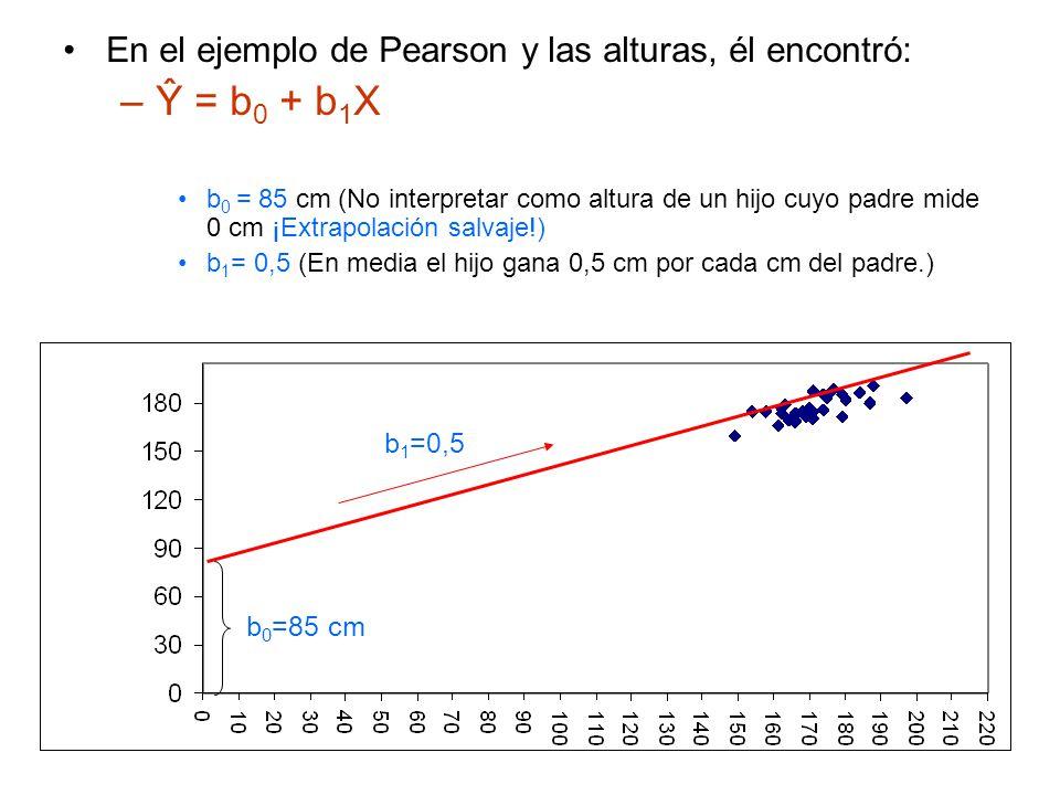 Ŷ = b0 + b1X En el ejemplo de Pearson y las alturas, él encontró: