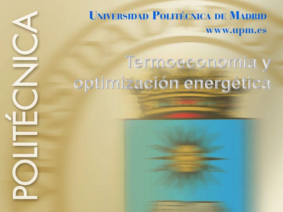 Termoeconomía y optimización energética