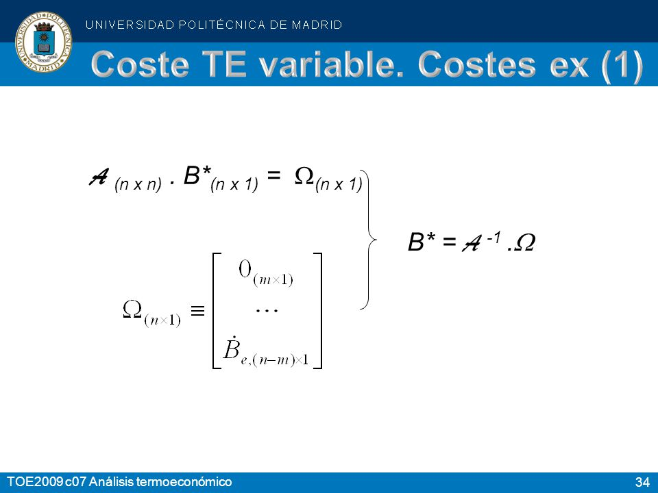 Coste TE variable. Costes ex (1)