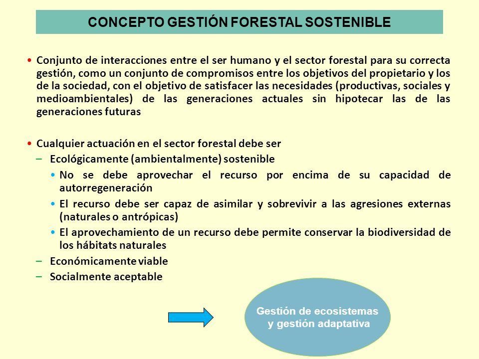 CONCEPTO GESTIÓN FORESTAL SOSTENIBLE Gestión de ecosistemas