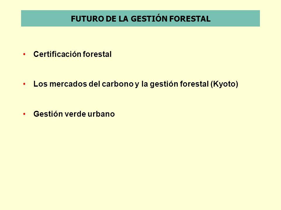 FUTURO DE LA GESTIÓN FORESTAL