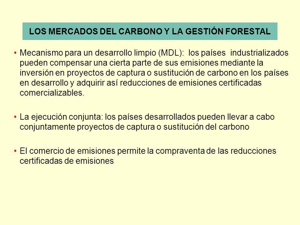 LOS MERCADOS DEL CARBONO Y LA GESTIÓN FORESTAL