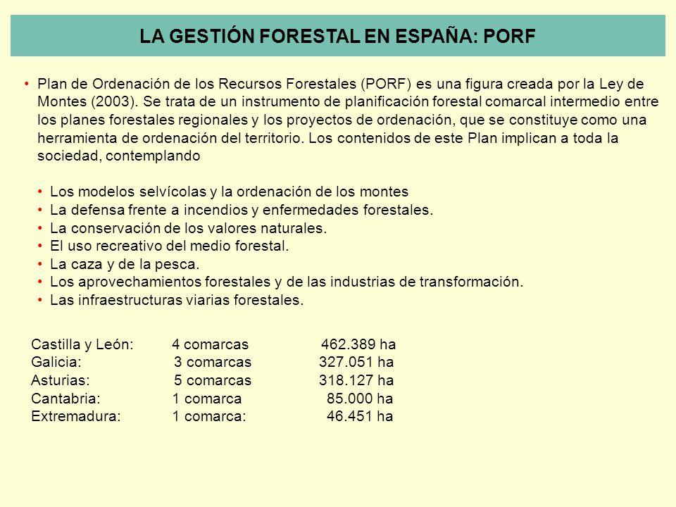 LA GESTIÓN FORESTAL EN ESPAÑA: PORF